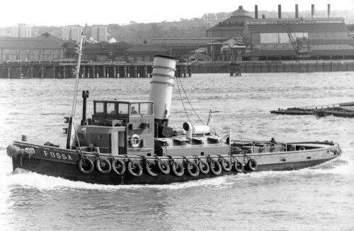 MT Fossa III - Gaselee flagship carried Fossa name.