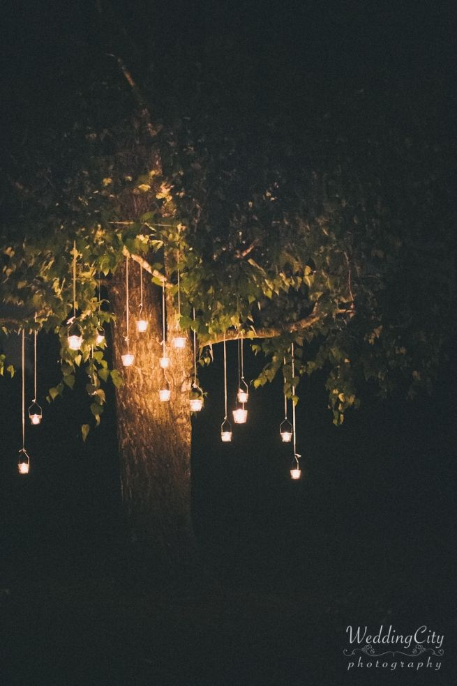 love this outside tree romantic deco... Destination Wedding Photographers - Venice - Siena - Amalfi Coast