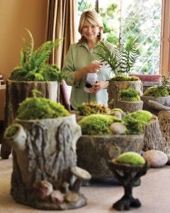 ~ Hollowed out tree stump/moss gardens....something to think about doing????