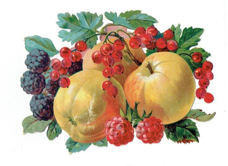 Un chromo - Découpis  - Pommes Mures -  Framboises  --  17 cm x 12 cm fr.picclick.com