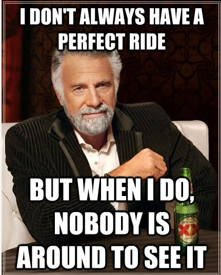 Equestrian Memes my life