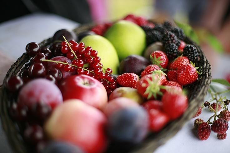 Fruit at Mad Foodcamp/ Refshaleøen 2011