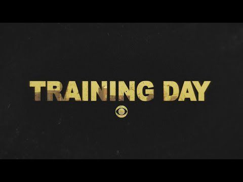 Your Ultimate Guide to Fall's New TV Shows! Training Day