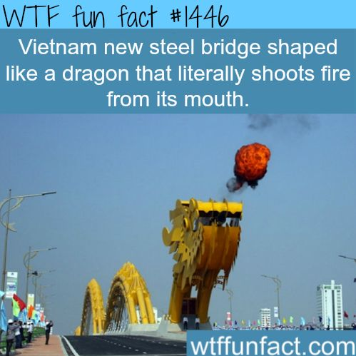 17 best images about bizzarrrrrr strange weird wtf for Facts about house fires
