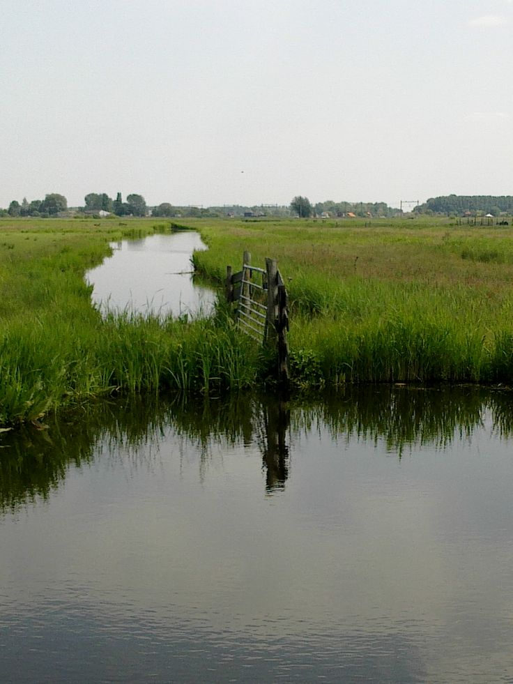 Dutch landscape / Hollands landschap - Westzijderveld, Zaanstreek *unable to find source*