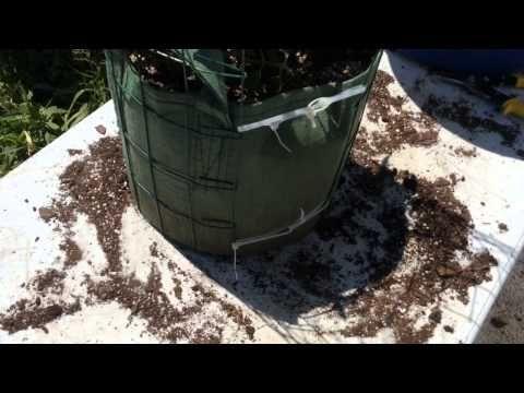 13 Best Larry Hall S Hybrid Rain Gutter Grow System