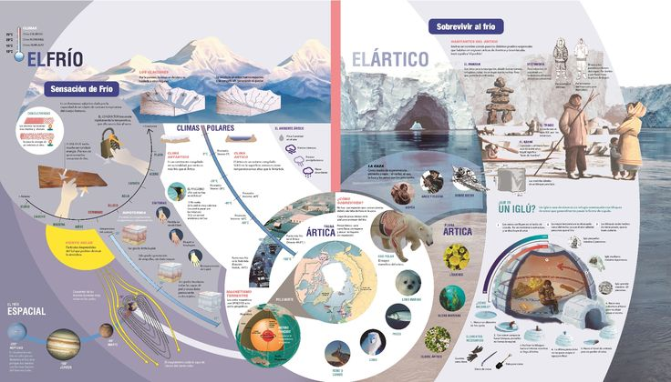 Mega - Info-graphic project for Design II (Salomone, FADU - UBA). Side 3.