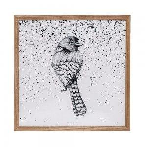 Plakat grafika z ptakiem w ramie - Bloomingville