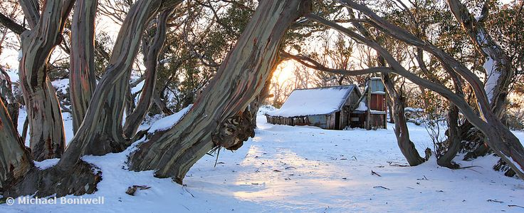 Wallace's Hut, Dawn, Falls Creek, Victoria