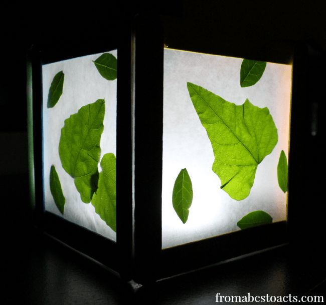 Wax Paper Nature Night Light - Think Outside the Toy Box - From ABCs to ACTs