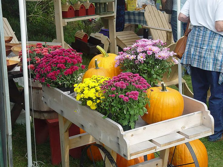 The Harvest Market Festival in Underhill, Vermont is an annual favorite for people of all ages. It is also one of the top things to see and do in Vermont.