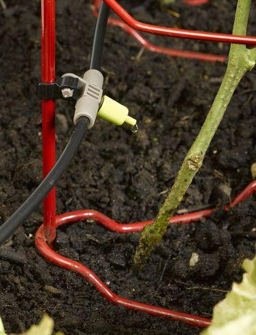 Micro Snip-n-Drip Irrigation Kit                                                                                                                                                                                 More