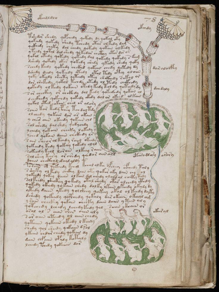 Usando estatística e ciência da computação, cientistas brasileiros confirmam que o livro mais misterioso da história não é uma pegadinha da Idade Média.