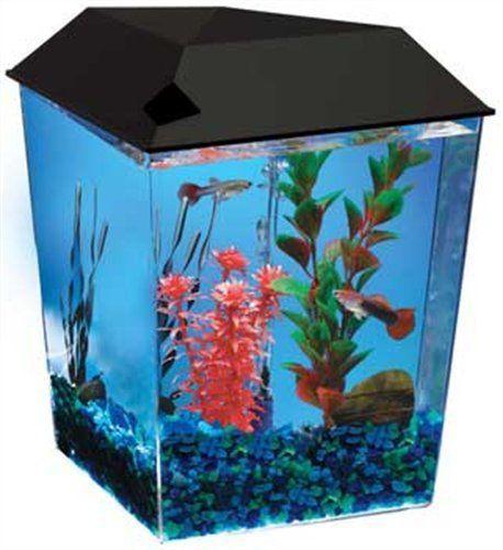 Aquarius1 1 Gallon Tank Aquarium System AQ11104BLK #aquariusaq11104blk