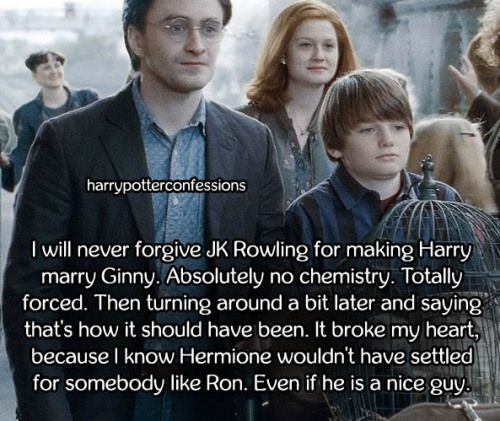 I will never forgive JK Rowling for making Harry marry Ginny