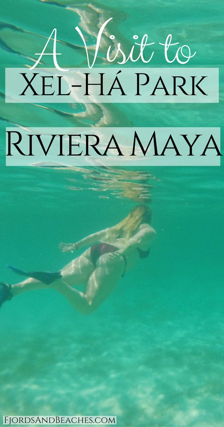 Visit Xel-ha Park, where to go in Riviera Maya, top Cancun activity, top Tulum activitiy, what to do in Playa del carmen