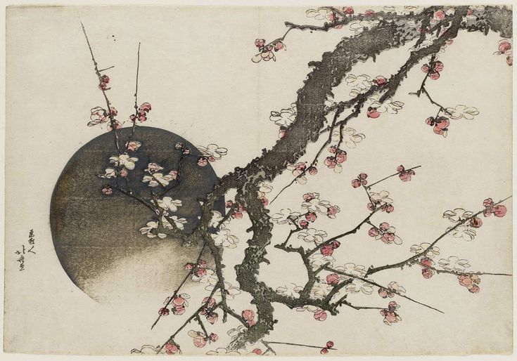 katsushika hokusai flower - Google Search