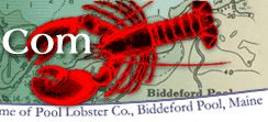 Pool Lobsters online--Lobster company owned and operated by women!  They're great!