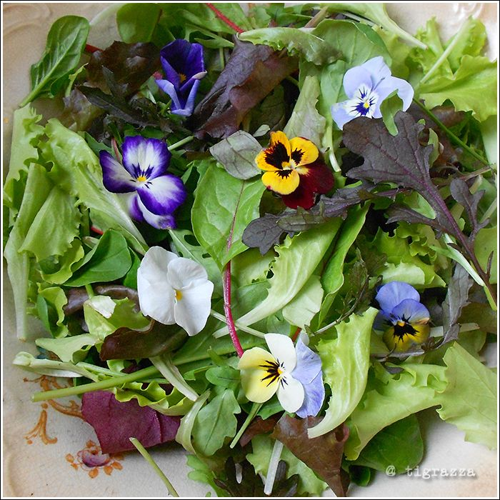 Flowery salad in my 90 yrs old bowl :>