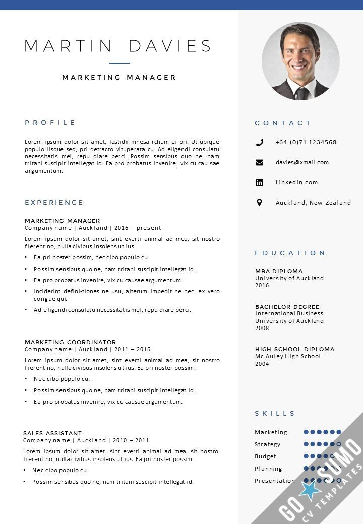 Resume Template Professional Cv Template Cv Template Professional Resume Template In 2020 Resume Template Professional Cv Template Professional Cv Template