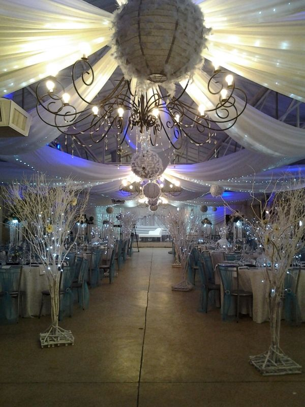 Executive Weddings. Executive Weddings located in Parys, South Africa. Executive Weddings company contacts on South Africa Directory. Send email to Executive Weddings.