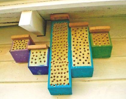 mason bee house instructions