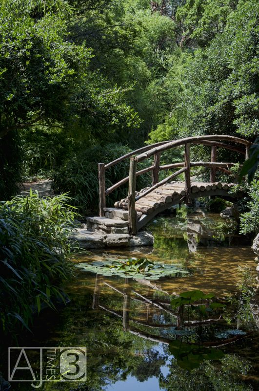 How to build a wooden bridge over a pond woodworking for Fish pond bridges