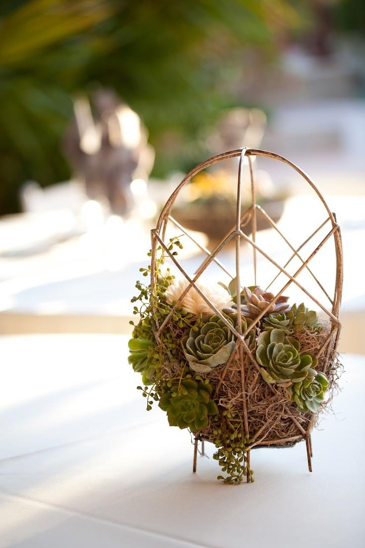 Spanish moss for crafts - Deanna Moore Design Wire Baskets Succulents Spanish Moss Wedding Centerpiece