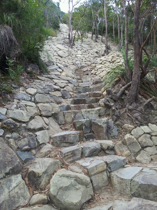Mt Coolum climb. Path leading up to spectacular views of the Sunshine Coast