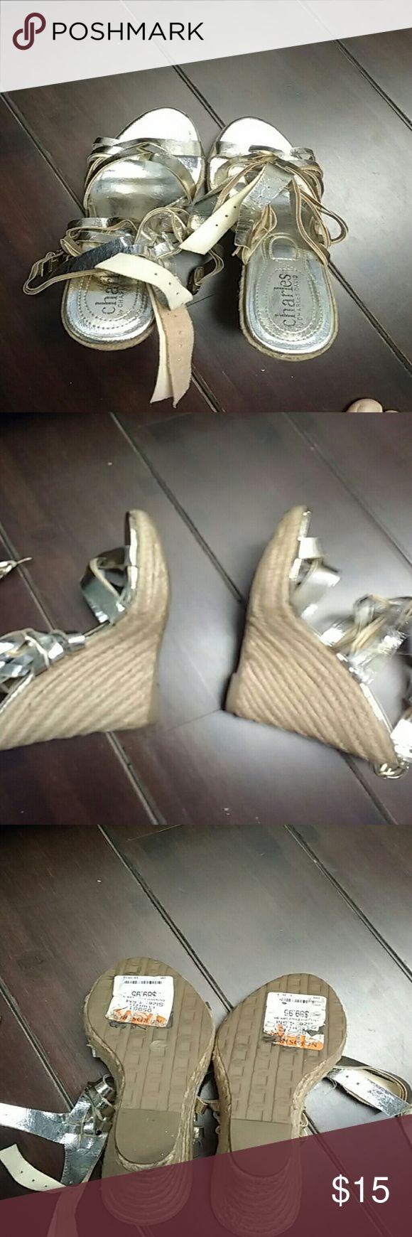 Charles David Shoes Like new Charles David Shoes Wedges