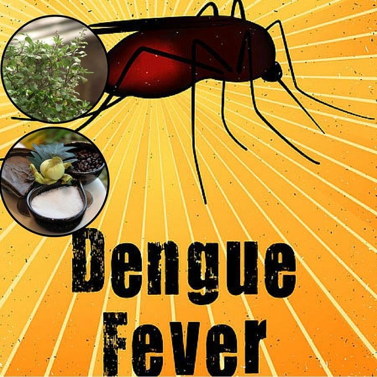 dengue fever research paper Welcome to center for dengue research the cdr was established in september 2012 by a cabinet directive in the faculty of medical sciences, university of sri jayawardenapura dengue viral infections are the most important mosquito borne virus infection in the world causing significant morbidity and mortality worldwide.