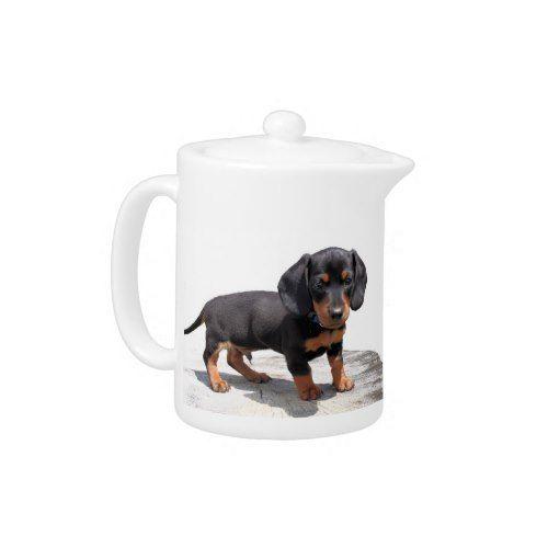 Mini Dachshund Puppy Teapot Zazzle Com Mini Dachshund Puppies