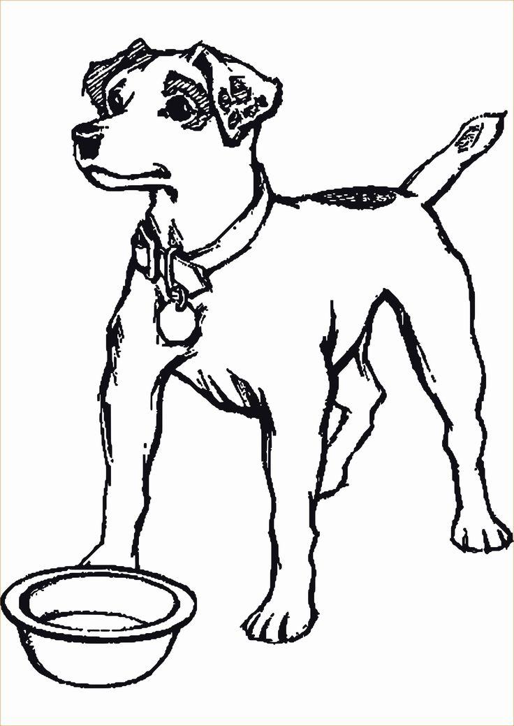 57 neu ausmalbilder hunde sammlung  ausmalbilder hunde