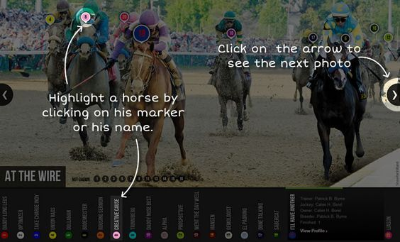 Relive Exaggerator's victory in the 2016 Preakness Stakes (gr. I). See where your favorite horse was at several crucial points of the race with our interactive slideshow.: