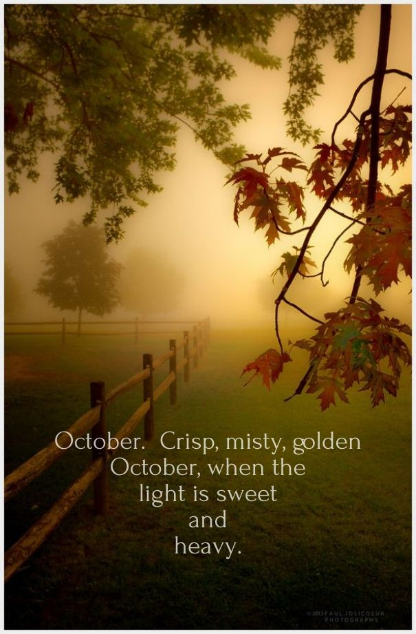Superior Love Quote On October For Fall.