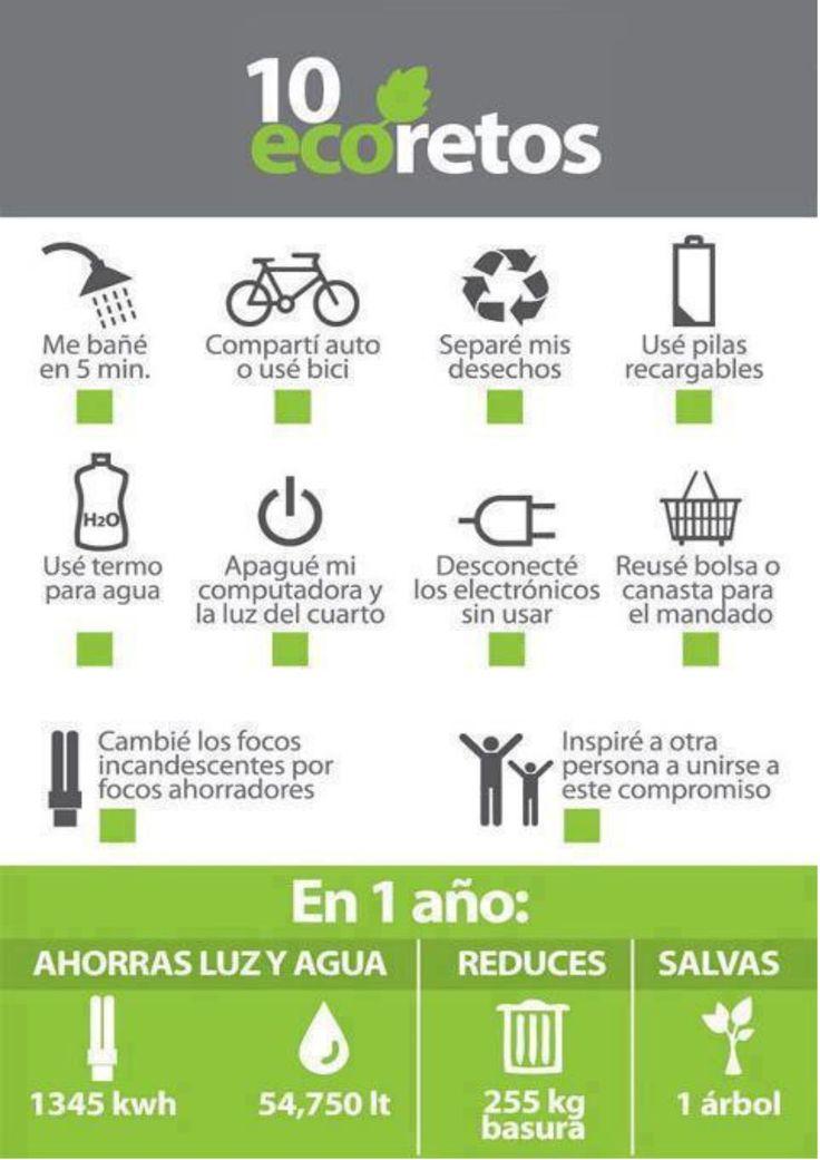 Retos para un equilibrio ecológico y verás cuanto ahorrarás no solo en dinero sino como ayudar al medio ambiente