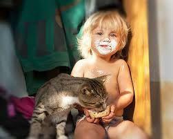 Afbeeldingsresultaat voor koty i dzieci