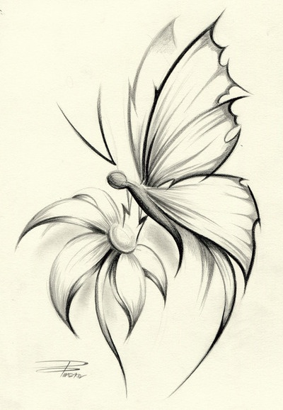 This is a sketch I found online that I really like. Want to change the body, but I adore the wings ♥ mine wouldn't have a flower either.  Mum likes this one. And dad will never know about it. That's the great thing about getting a tattoo on the foot!