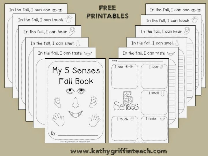 kathy griffin 39 s teaching strategies five senses and fall science pinterest kindergarten. Black Bedroom Furniture Sets. Home Design Ideas