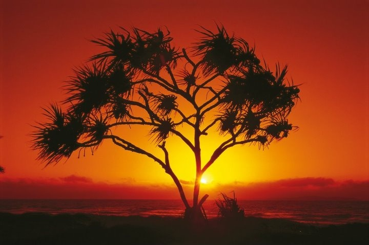 sunrise Yeppoon, Queensland, Australia