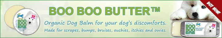 The Health Benefits Of Coconut Oil   Dogs Naturally Magazine  1/4 teaspoon per 10 pounds of body weight