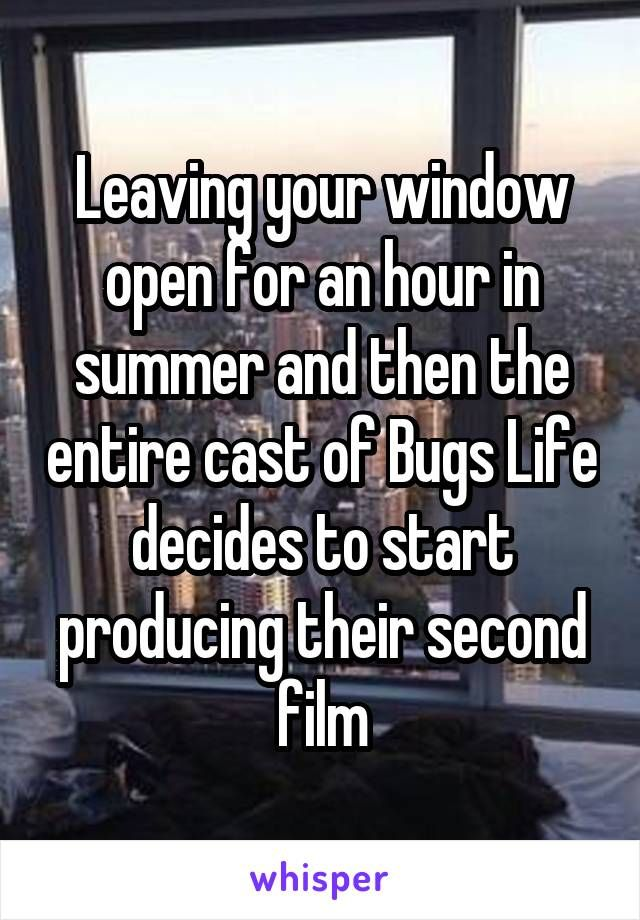 Leaving your window open for an hour in summer and then the entire cast of Bugs Life decides to start producing their second film