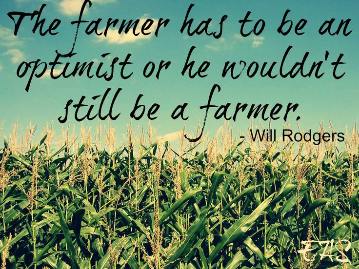 """The farmer has to be an optimist or he wouldn't still be a farmer."" - Will Rodgers"