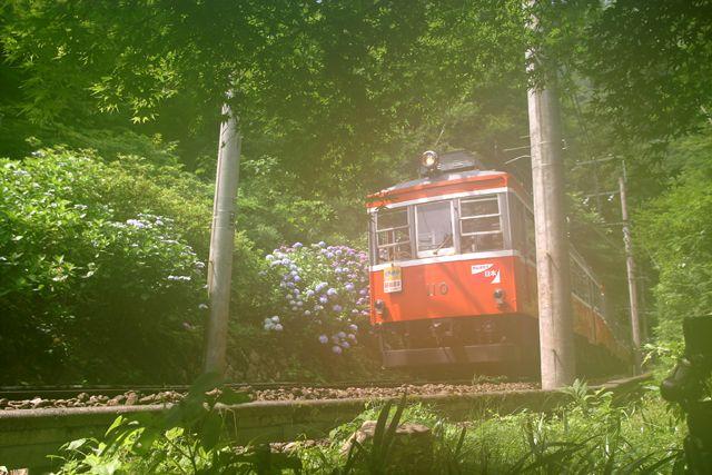 モハ2形110 箱根登山鉄道某所 2011年7月3日撮影 ずっと脇に抱えていたレンズをあわてて装着したおかげで曇りのある画像になってしまったが、これはこれで幻想的な効果と言えるのではないだろうか?