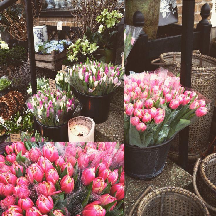 #tulpaner!! #blommor
