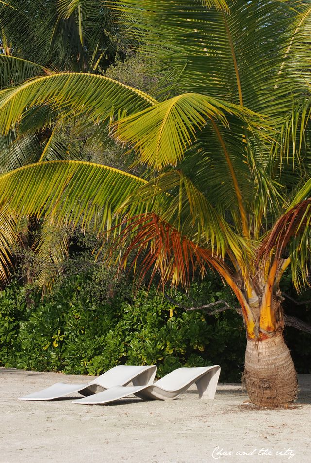 Holiday Inn Resort Kandooma Maldives: http://divaaniblogit.fi/charandthecity/2014/01/27/malediivit-holiday-inn-kandooma/