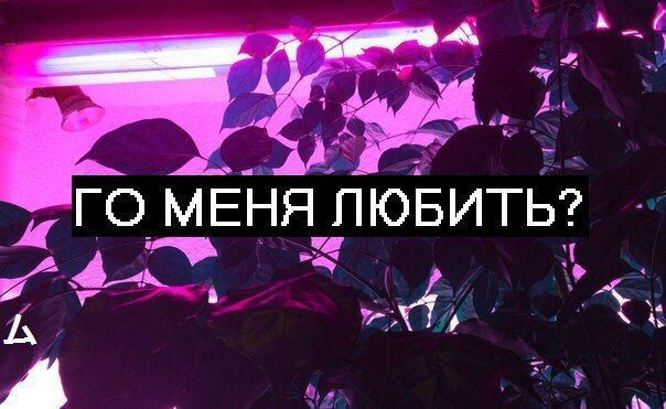 Вика Смирнова