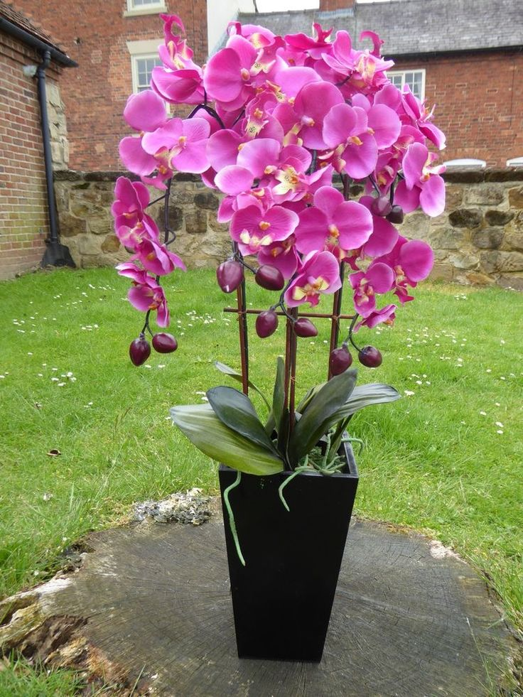 Large Artificial Pink Orchid In A Black Wooden Pot Potted Flowers Plant  70cm #UKGardens