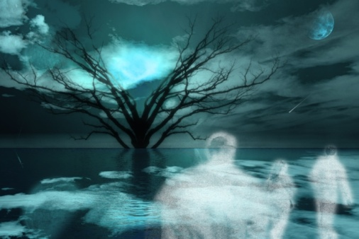http://onejohnmitchell.files.wordpress.com/2012/08/ghosts-trees1.jpg