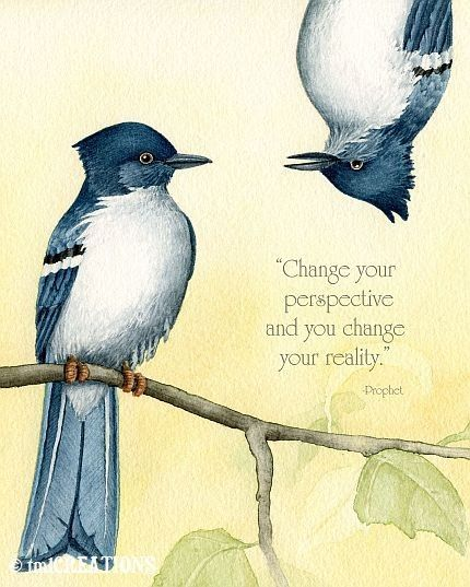 Change your perspective and you change your reality.